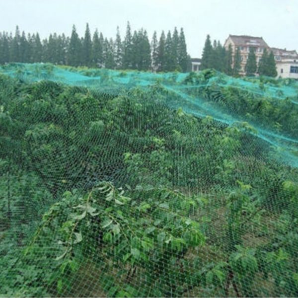 2/4/5M Extra Strong Anti Bird Netting Garden Allotment Doesn't Tangle And Reusable Lasting Protection Against Birds Deer