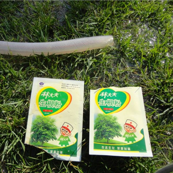 Water soluble Fertilizer for New Transplant Branch rooting growth hormone
