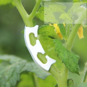 50pcs! Plastic plant clips anti-bending tomatoes Branch Fixing garden fruit Vine Connects Supporting Plant Stems Grow Upright