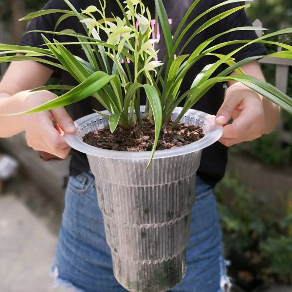 Meshpot double wall excellent drainage hole orchid flower pot with root controlling slot plastic flower planter